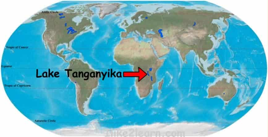 Where do Frontosa Cichlids come from? Lake Tanganyika Map