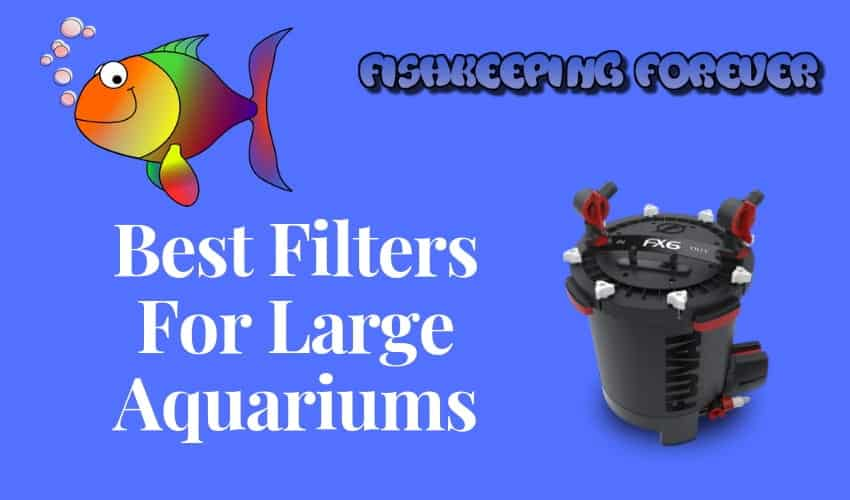 best filters for larger aquariums