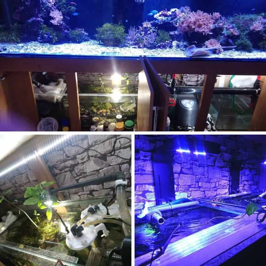 9 foot reef tank equipment