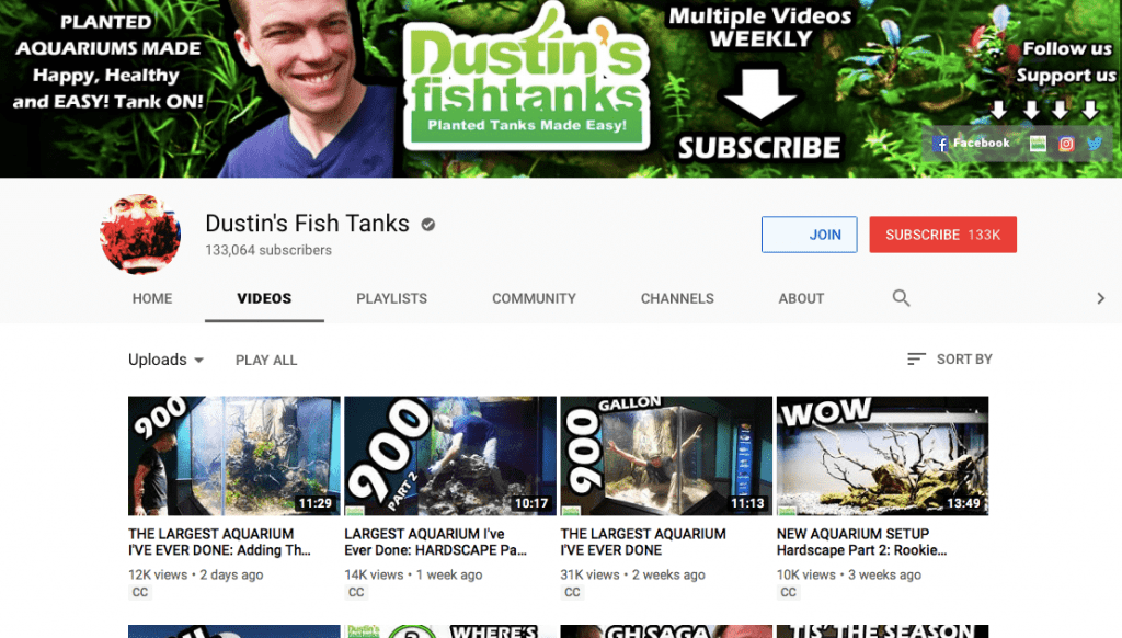 top 10 aquarium youtubers 2019