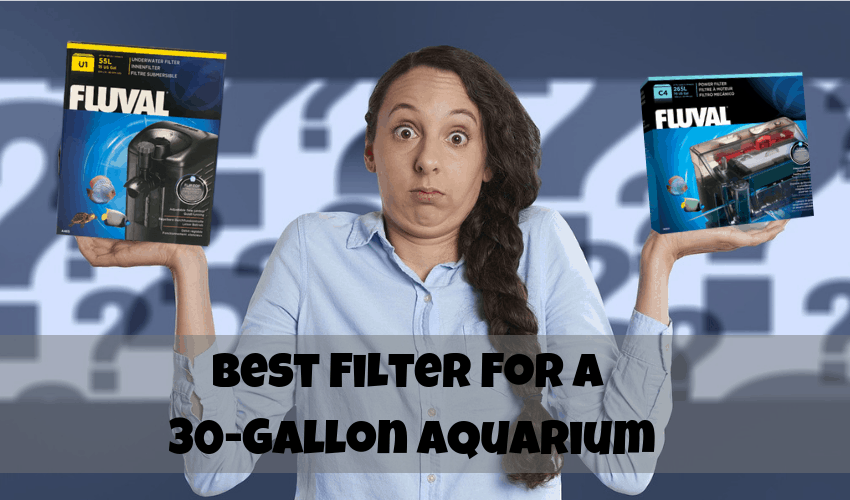 filter for a 30 gallon aquarium