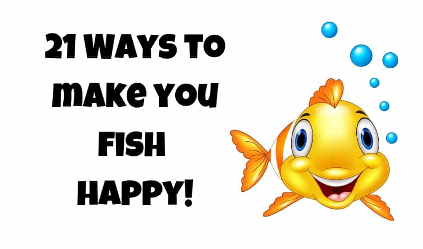 21 ways to make your fish happy image