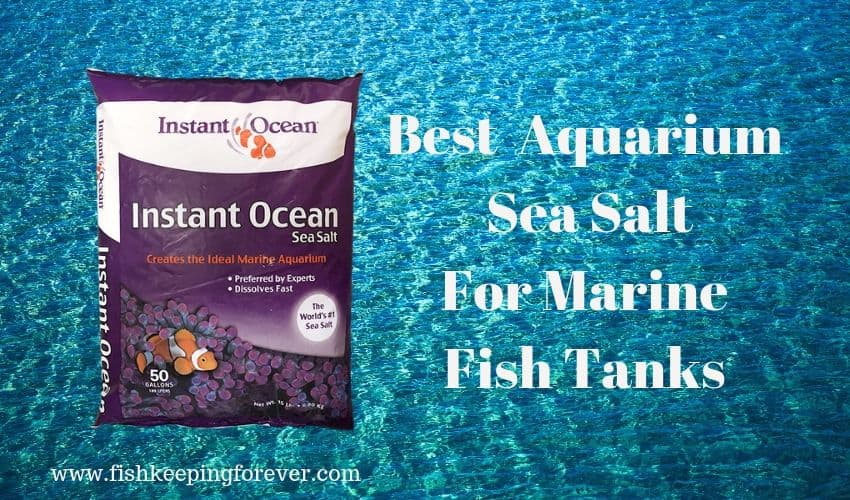 best aquarium sea salt for fish tanks