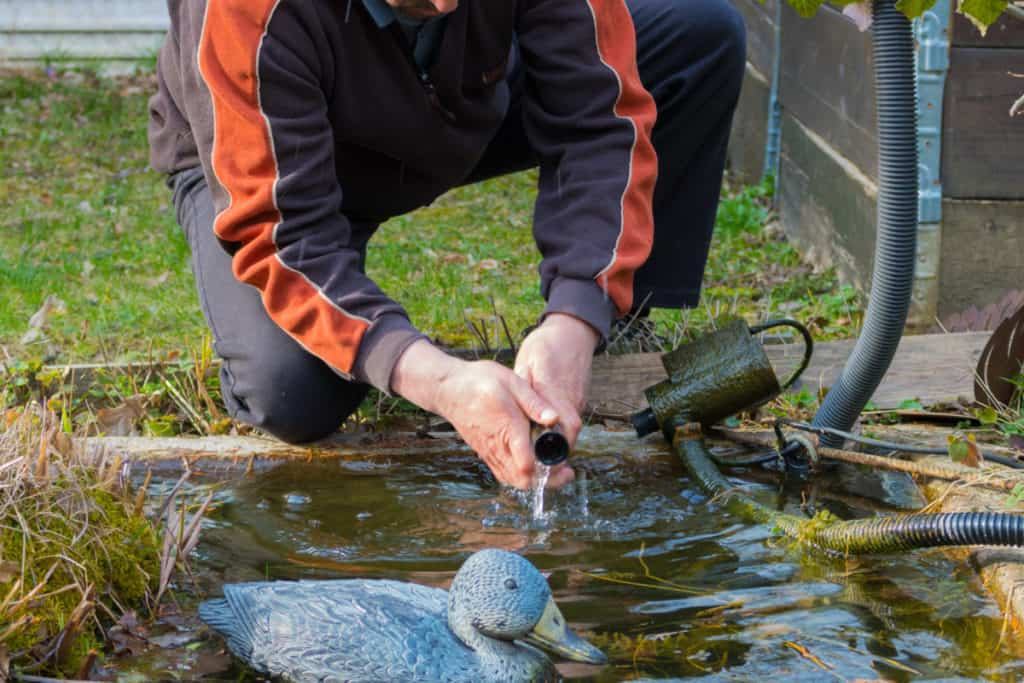 cleaning a pond filter