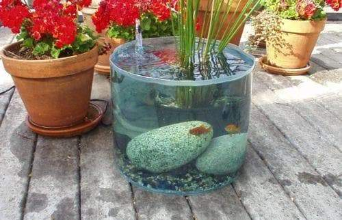 21 Container Pond Ideas | Patio Pond Ideas For Small Spaces 10