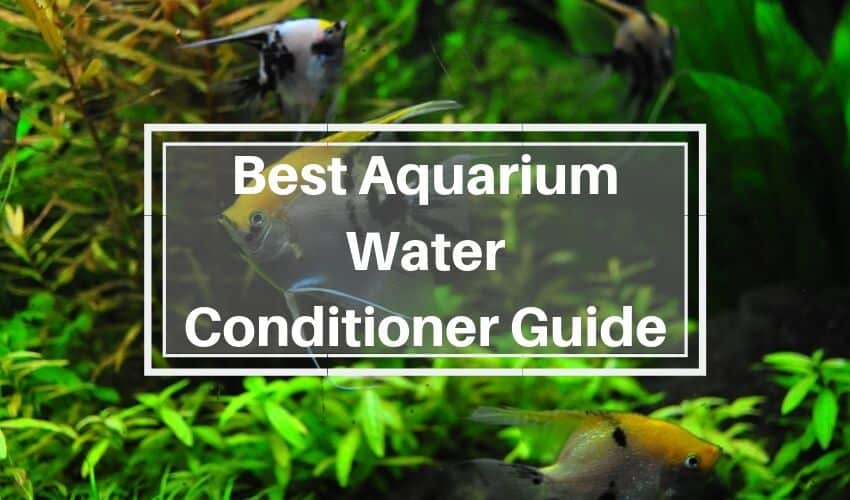 aquarium water conditioner guide
