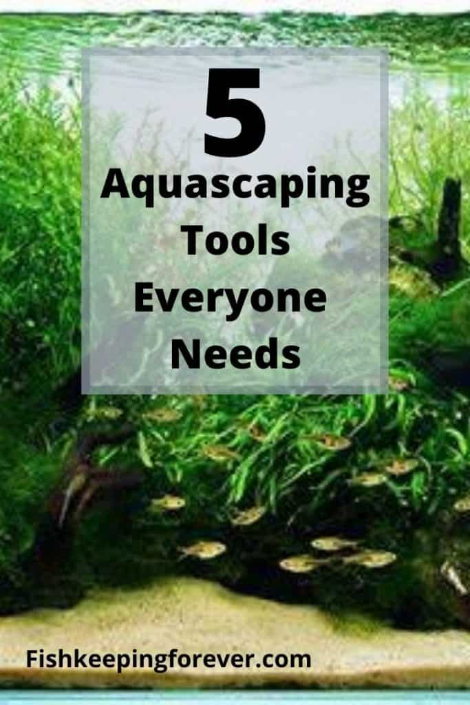 BEST AQUASCAPING TOOLS