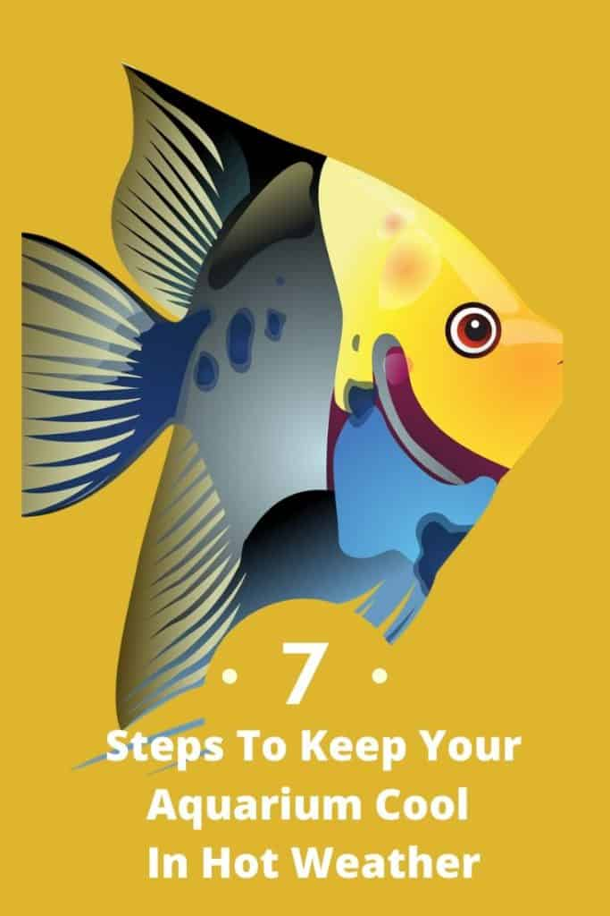 7 Steps To Keep An Aquarium Cool In Hot Weather 1