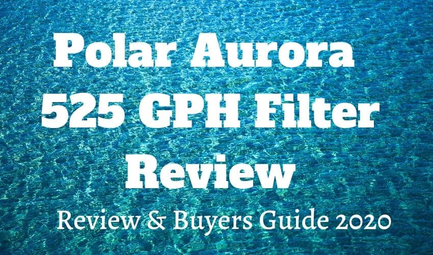 polar aurora filter review