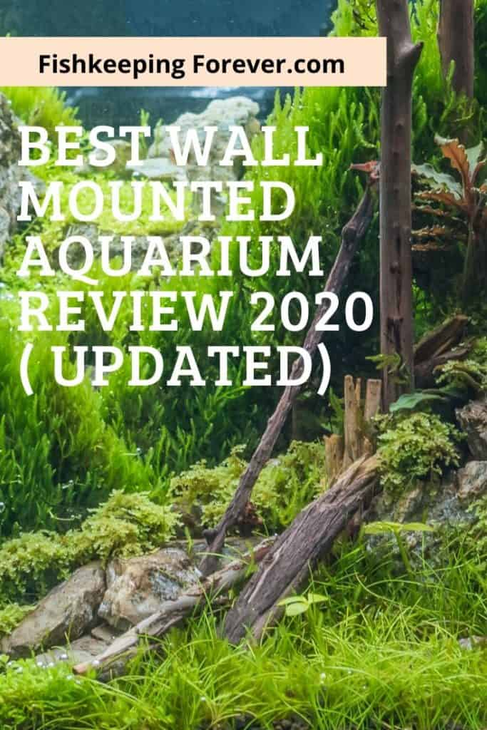 Best Wall Mounted Fish Tank Review 2020 ( Updated ) 1