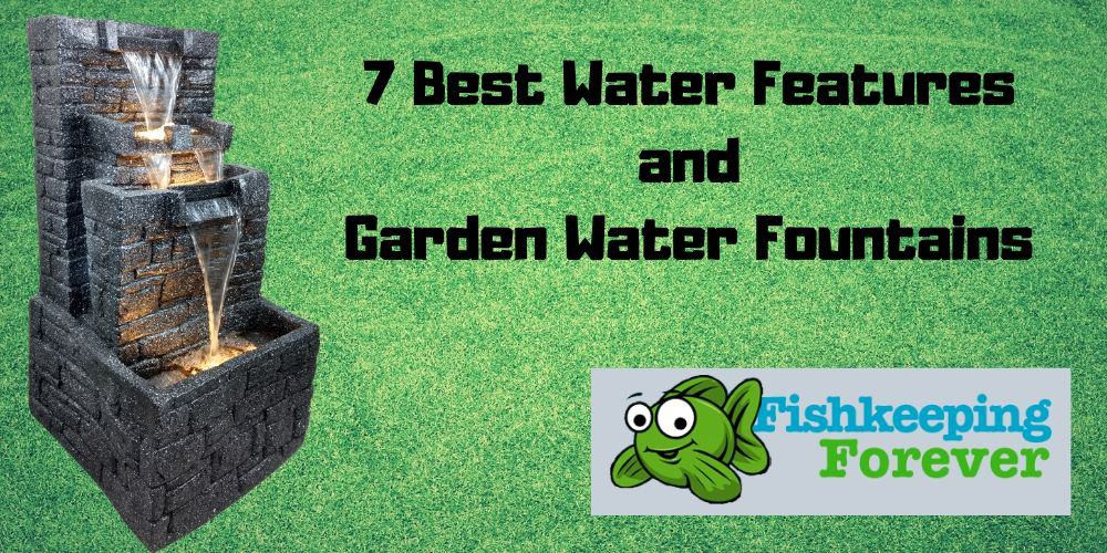 best water features