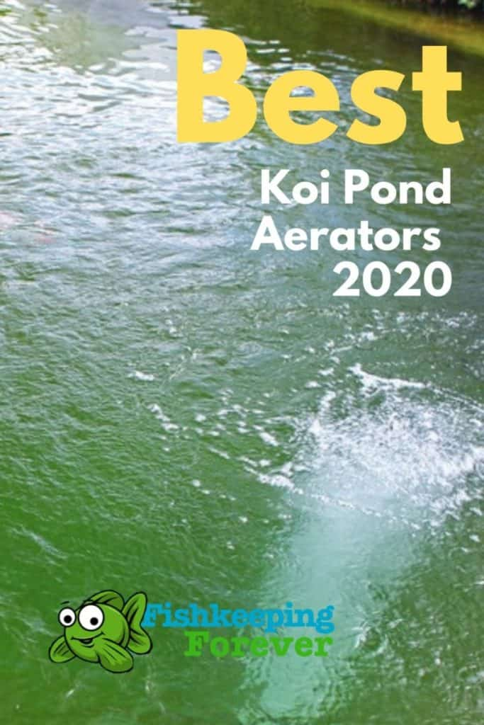 Best Koi Pond Aerators
