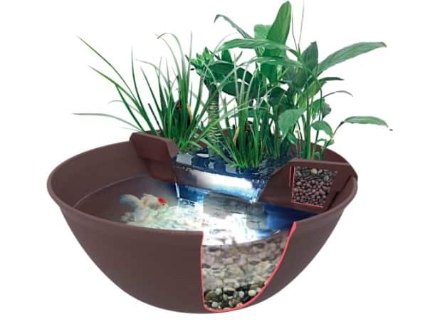 Pond in a Pot | 10 Best Pond Bowls to Create a Pond in a Pot 5