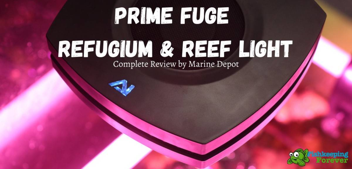 Prime Fuge Refugium & Reef Light