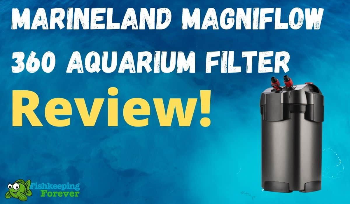 marineland maginflow aquarium filter